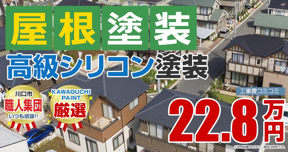 高級シリコン塗装 22.8万円